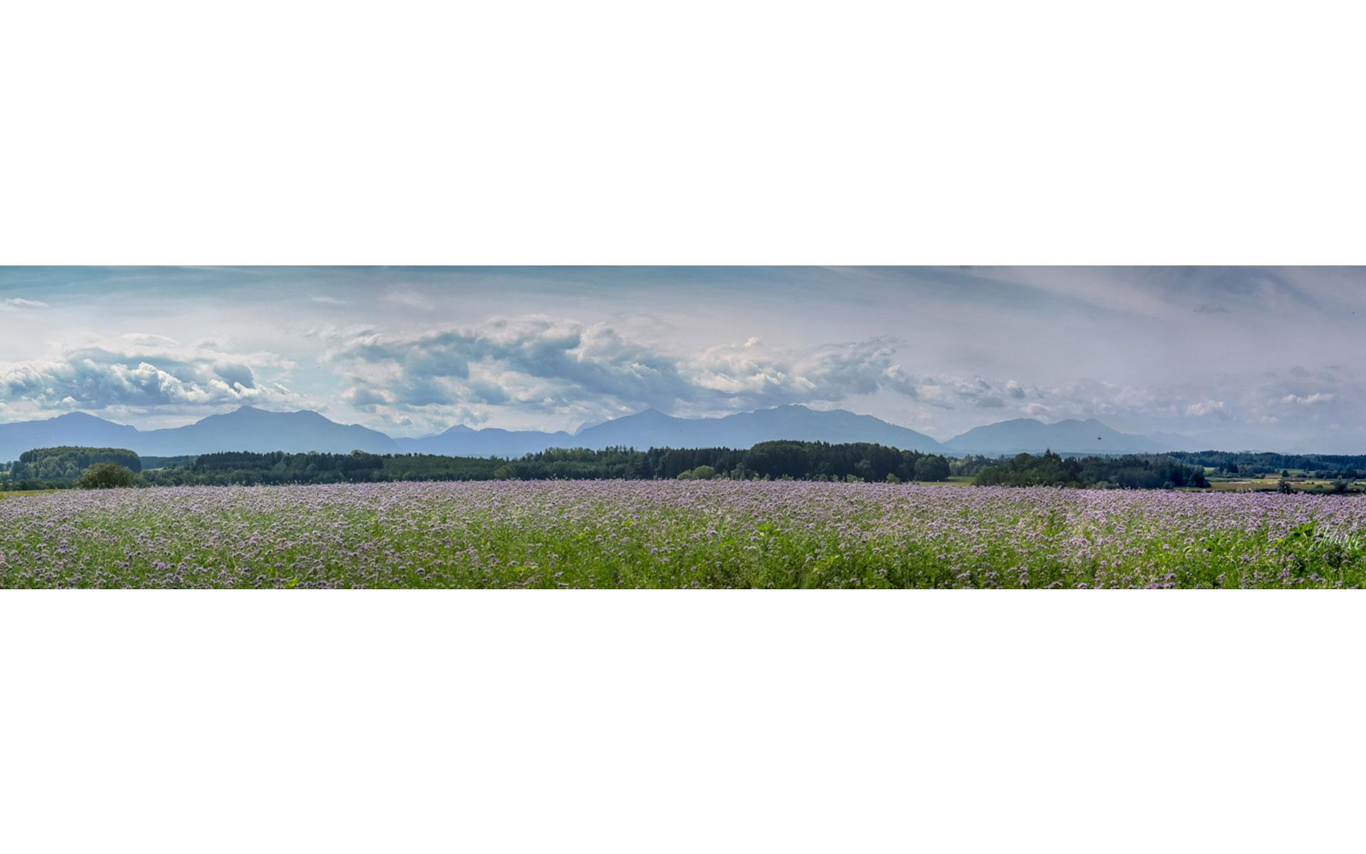 panoramachiemsee